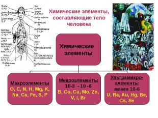 Химические элементы, составляющие тело человека