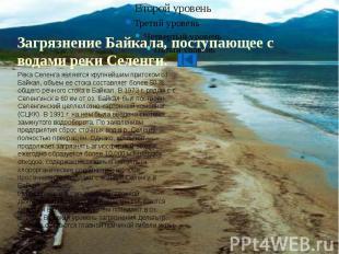 Загрязнение Байкала, поступающее с водами реки Селенги.