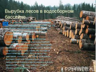 Вырубка лесов в водосборном бассейне Первичная древесина является главным источн