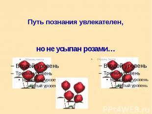 Путь познания увлекателен, Путь познания увлекателен,