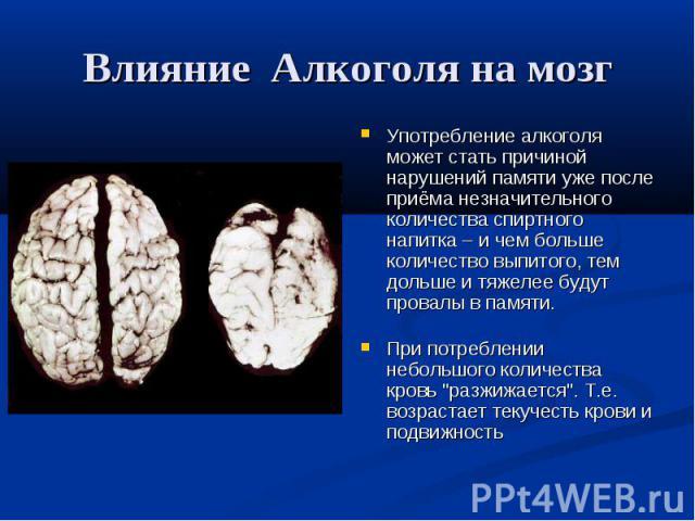 Алкоголь оказывает негативное влияние практически на все органы человека, однако самым сильным и разрушительным является вред, наносимый головному мозгу.