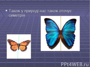 Також у природі нас також оточує симетрія Також у природі нас також оточує симет