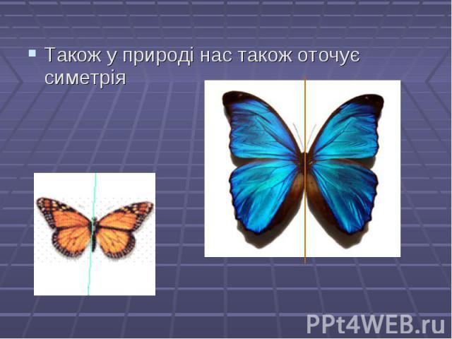 Також у природі нас також оточує симетрія Також у природі нас також оточує симетрія