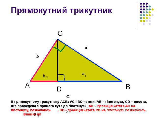 Прямокутний трикутник