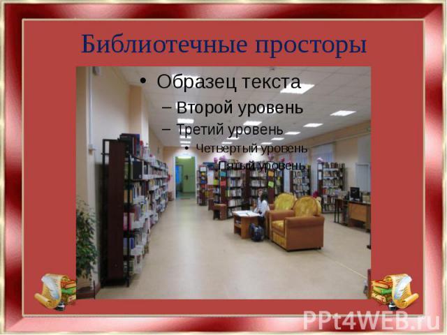 Библиотечные просторы