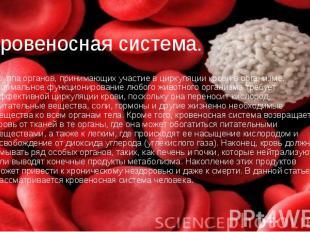 Кровеносная система. группа органов, принимающих участие в циркуляции крови в ор