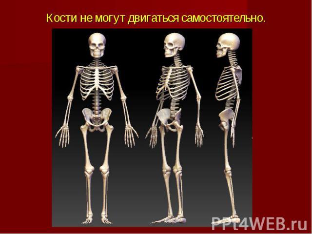 Кости не могут двигаться самостоятельно.