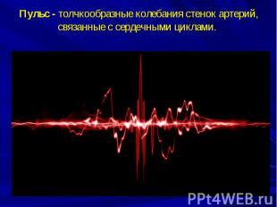 Пульс -толчкообразные колебания стенок артерий, связанные с сердечными цик