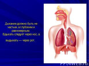 Дыхание должно быть не частым, а глубоким и равномерным. Вдыхать следует через н