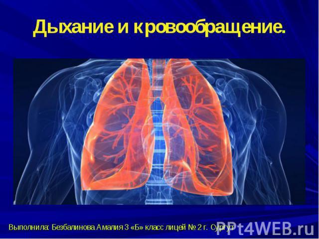 Дыхание и кровообращение.Выполнила: Безбалинова Амалия 3 «Б» класс лицей № 2 г. Сургут