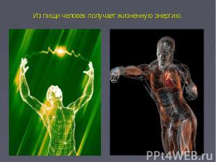 Из пищи человек получает жизненную энергию.