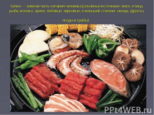 Белки— важная часть питаниячеловека(основные источники: мясо, птица, рыба, молоко, орехи, бобовые, зерновые; в меньшей степени: овощи, фрукты, ягоды и грибы)