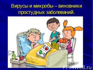 Вирусы и микробы – виновники простудных заболеваний.