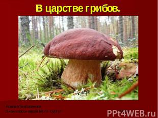 В царстве грибов.Амалия Безбалинова3 «Б» класс» лицей № 2 г. Сургут 2013 г.