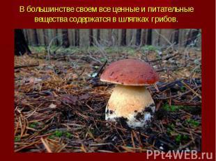 В большинстве своем все ценные и питательные вещества содержатся в шляпках грибо