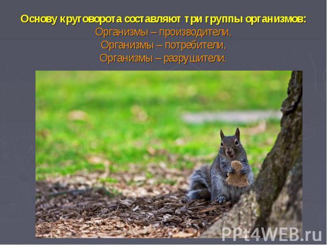 Основу круговорота составляют три группы организмов:Организмы – производители,Организмы – потребители,Организмы – разрушители.