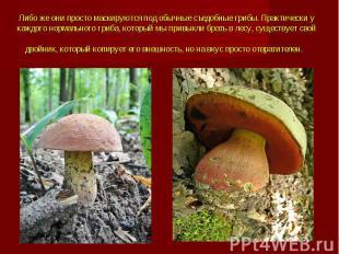 Либо же они просто маскируются под обычные съедобные грибы.Практически у к