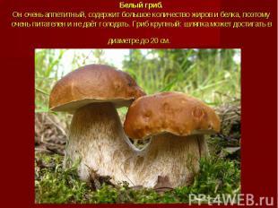 Белый гриб.Он очень аппетитный, содержит большое количество жиров и белка, поэто