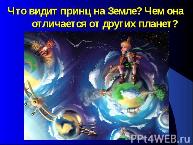 Что видит принц на Земле? Чем она отличается от других планет?