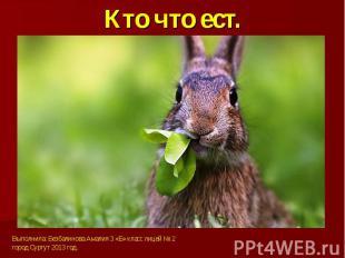 Кто что ест.Выполнила: Безбалинова Амалия 3 «Б» класс лицей № 2город Сургут 2013