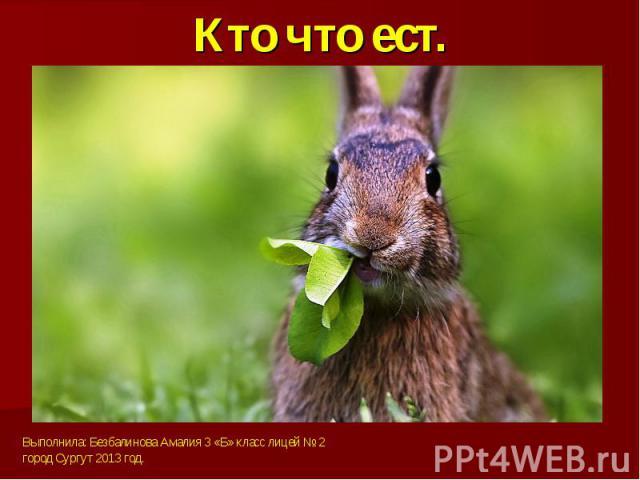 Кто что ест.Выполнила: Безбалинова Амалия 3 «Б» класс лицей № 2город Сургут 2013 год.