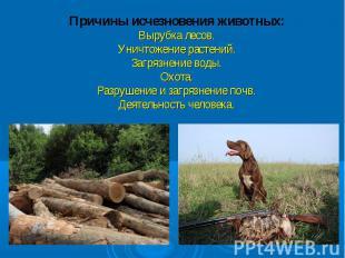 Причины исчезновения животных:Вырубка лесов.Уничтожение растений.Загрязнение вод