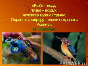 «Рыбе – вода, птице – воздух, человеку нужна Родина.Охранять природу – значит ох