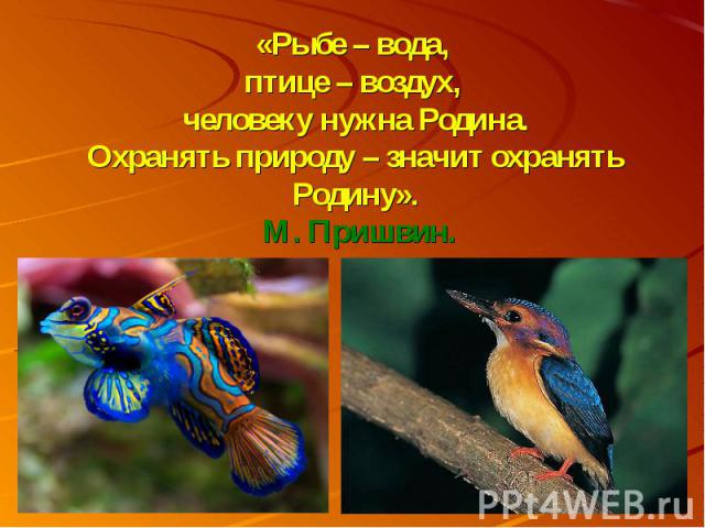 «Рыбе – вода, птице – воздух, человеку нужна Родина.Охранять природу – значит охранять Родину». М. Пришвин.