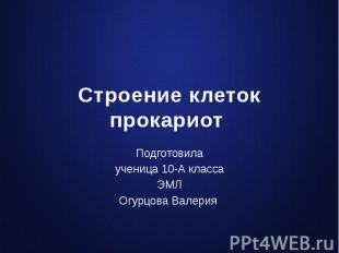 Строение клеток прокариот Подготовила ученица 10-А класса ЭМЛ Огурцова Валерия