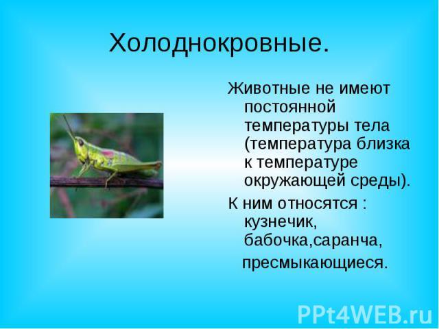 Холоднокровные.Животные не имеют постоянной температуры тела (температура близка к температуре окружающей среды).К ним относятся : кузнечик, бабочка,саранча, пресмыкающиеся.