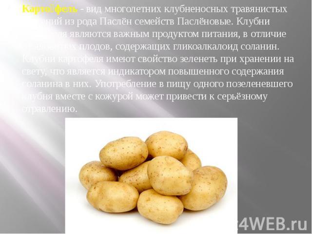Картофель -видмноголетнихклубненосныхтравянистых растенийиз рода ПаслёнсемействПаслёновые. Клубни картофеля являются важнымпродуктом питания, в отличие отядовитых плодов, содержащихгликоалк…