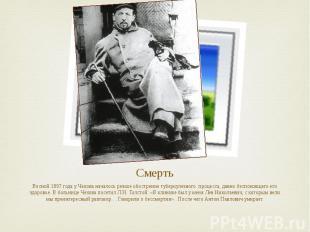 Смерть Весной 1897 года у Чехова началось резкое обострение туберкулезного проце