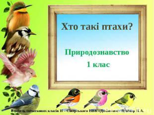 Хто такі птахи? Природознавство 1 клас