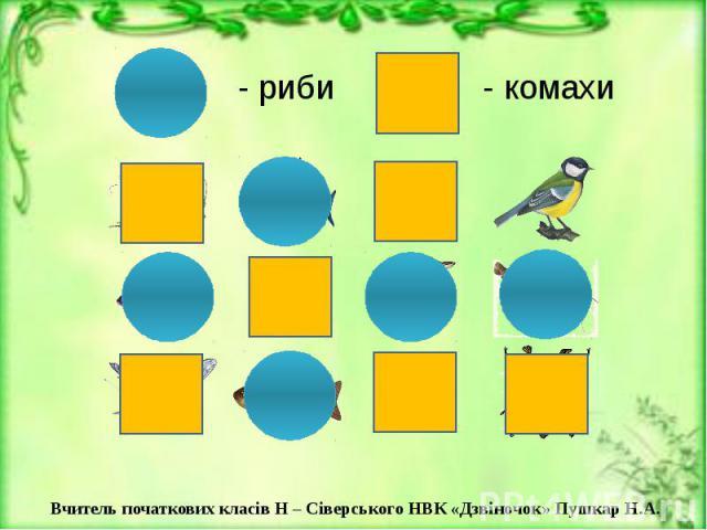 - риби - комахи