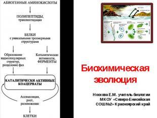 Биохимическая эволюцияНоскова Е.М. учитель биологии МКОУ «Северо-Енисейская СОШ№
