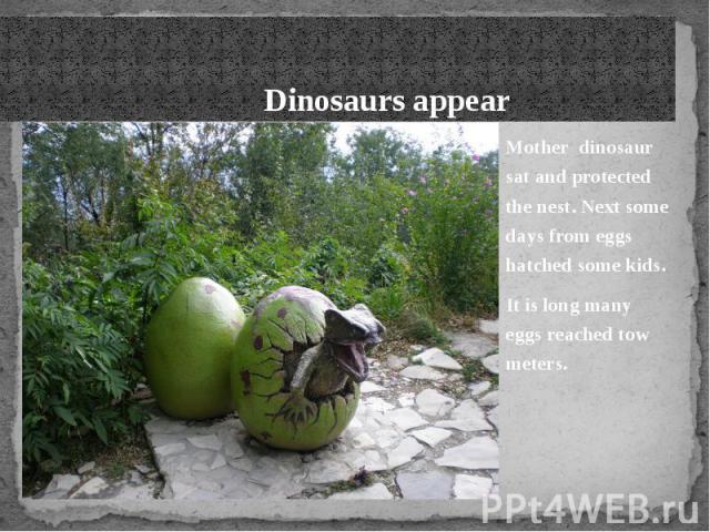 Dinosaurs appear