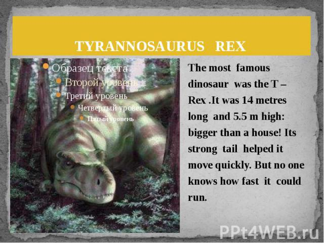 TYRANNOSAURUS REX The most famous dinosaur was the T –Rex .It was 14 metres long and 5.5 m high: bigger than a house! Its strong tail helped it move quickly. But no one knows how fast it could run.