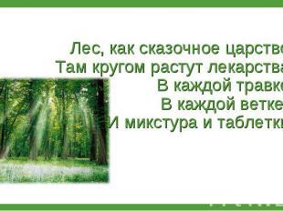 Лес, как сказочное царство: Там кругом растут лекарства. В каждой травке, В кажд
