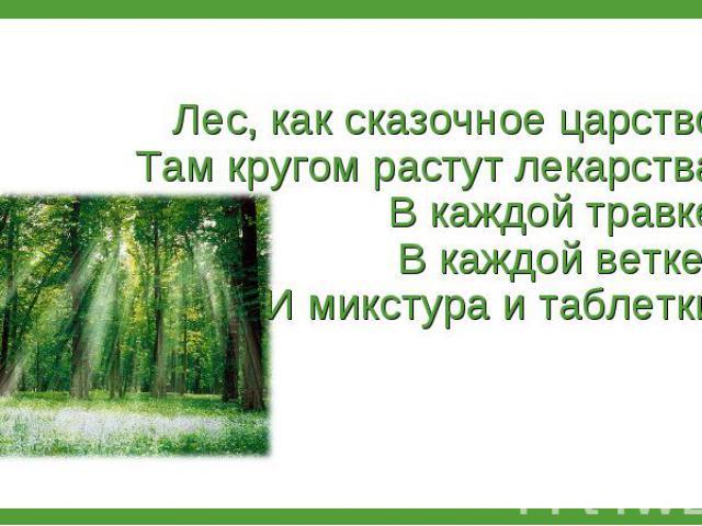 Лес, как сказочное царство: Там кругом растут лекарства. В каждой травке, В каждой ветке - И микстура и таблетки. Лес, как сказочное царство: Там кругом растут лекарства. В каждой травке, В каждой ветке - И микстура и таблетки.