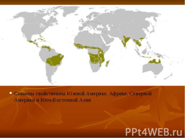 Саванны свойственны Южной Америке, Африке, Северной Америки и Юго-Восточной Азии Саванны свойственны Южной Америке, Африке, Северной Америки и Юго-Восточной Азии