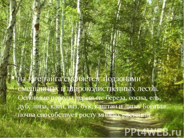 на юге тайга сменяется подзонами смешанных и широколиственных лесов. Основные породы деревьев: береза, сосна, ель, дуб, липа, клен, вяз, бук, каштан и липа. Богатая почва способствует росту многих растений. на юге тайга сменяется подзонами смешанных…