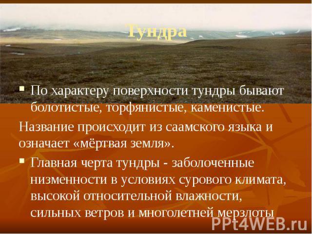 Тундра По характеру поверхности тундры бывают болотистые, торфянистые, каменистые. Название происходит из саамского языка и означает «мёртвая земля». Главная черта тундры- заболоченные низменности в условиях сурового климата, высокой относител…