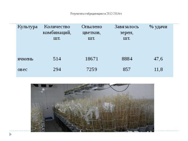 Результаты гибридизации за 2012-2014гг.