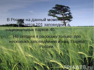 В России на данный момент насчитывается 101 заповедник а, национальных парков 40