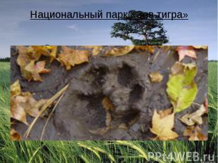 Национальный парк «Зов тигра»