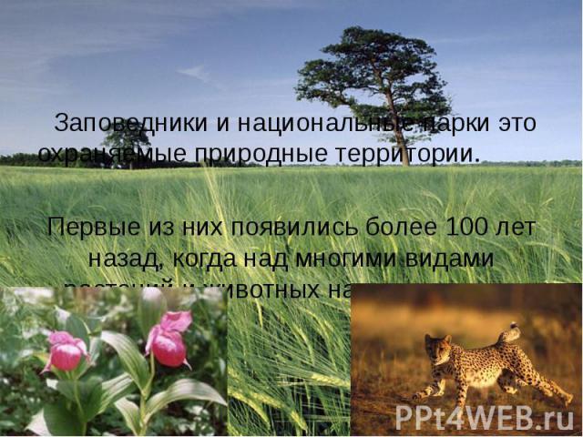 Заповедники и национальные парки это охраняемые природные территории. Первые из них появились более 100 лет назад, когда над многими видами растений и животных нависла угроза.