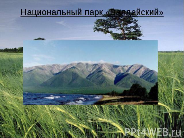 Национальный парк «Валдайский»