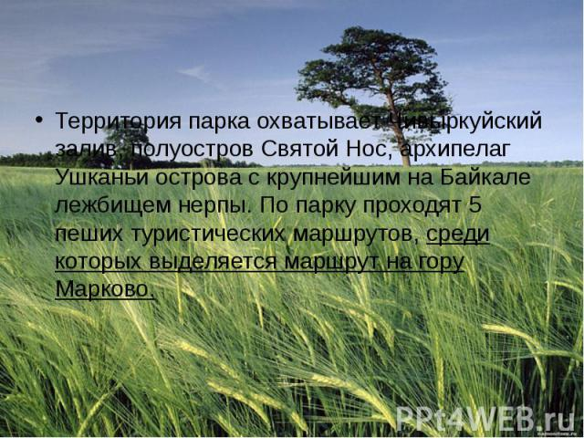 Территория парка охватывает Чивыркуйский залив, полуостров Святой Нос, архипелаг Ушканьи острова с крупнейшим на Байкале лежбищем нерпы. По парку проходят 5 пеших туристических маршрутов,среди которых выделяется маршрут на гору Марково.