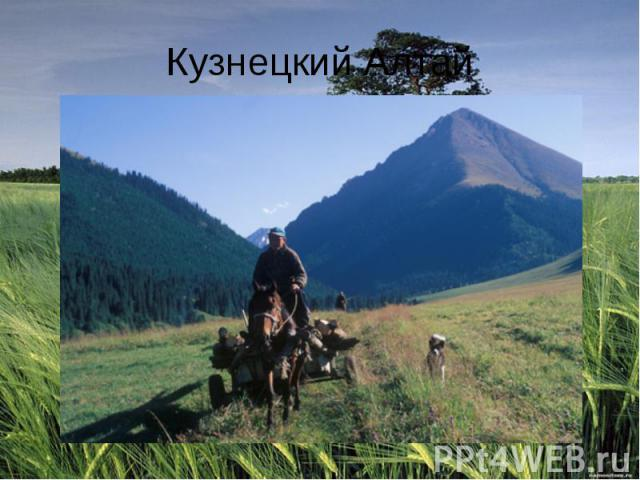 Кузнецкий Алтай