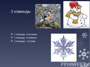 3 команды 1 команда: Снеговики 2 команда: Снежинки 3 команда : Снегири